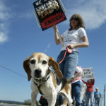 Puppy Mill Awareness Day Garners Huge Turnout