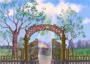 rainbowbridgeoriginal
