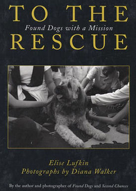 to_the_rescue