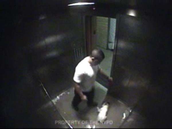 Chris Grant kicks little dog in elevator