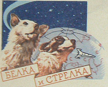 Dogs named belka and strelka started their flight aboard the russian