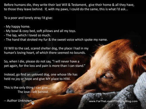 A Dog S Last Will And Testament Poem
