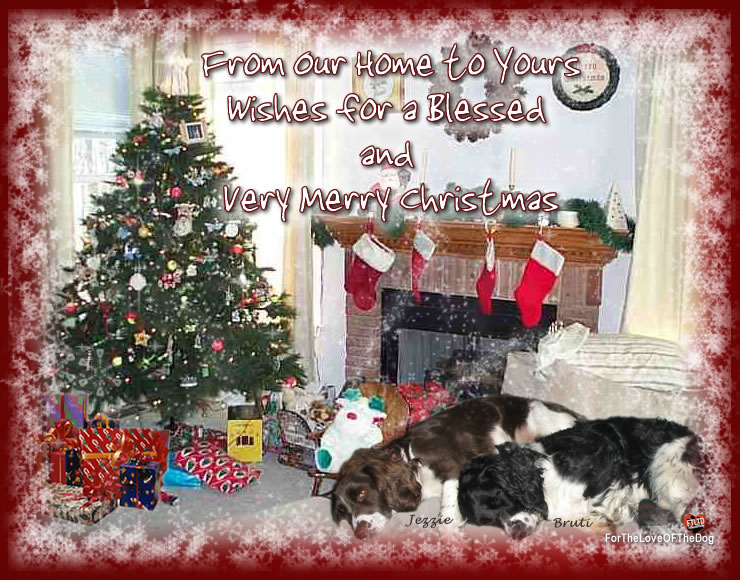 Merry Christmas From Our Home To Yours.For The Love Of The Dog