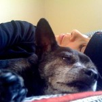 A Tribute to a Beloved Dog, Sarah Silver's Touching Words